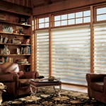 Pirouette Window Blind Ideas